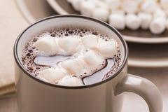 Cocoa with mini marshmallows Royalty Free Stock Photo