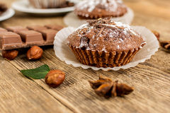 Cocoa muffin Stock Photography