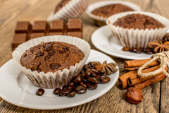 Cocoa muffin Stock Images