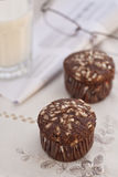 Cocoa muffins royalty free stock photo