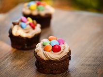 Cocoa muffins and colored sprigs. Here`s some very good lokking cocoa muffins with cream and lovely colored sping. Kids will love them Stock Image