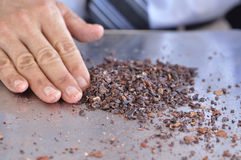 Cocoa nibs Stock Photography