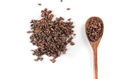 Cocoa Nibs into a spoon. Isolated on white background stock photo