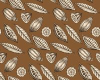 Cocoa pattern Stock Images