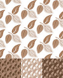 Cocoa. Pattern Royalty Free Stock Photos