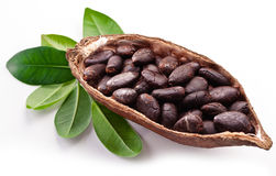 Free Cocoa Pod Stock Images - 33132934