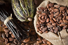 Cocoa pod and beans royalty free stock photo