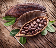 Cocoa pod. On a dark wooden table Stock Image
