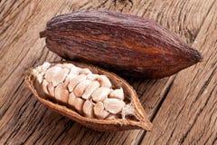 Cocoa pod Stock Photos