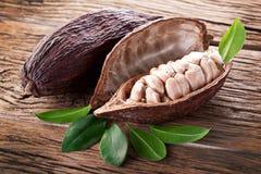 Cocoa pod Stock Photography