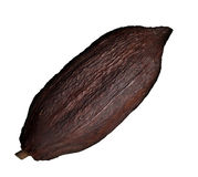 Cocoa pod. A cocoa pod fruit has a rough, leathery rind about 2 to 3cm  thick filled with sweet, mucilaginous pulp  with a lemonade-like taste enclosing 30 to Royalty Free Stock Images