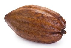 Cocoa pod on white background. Cocoa pod isolated on white background royalty free stock photography
