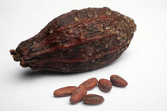 Cocoa pods and beans Royalty Free Stock Image