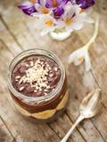 Cocoa porridge with banana and almonds Stock Photography