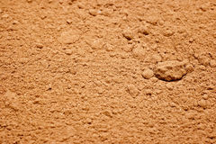 Cocoa powder. Stock Images