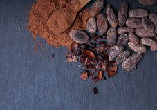 Cocoa powder and beans Royalty Free Stock Photo
