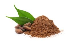 Cocoa powder and beans. On white background stock photos