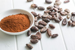 Cocoa powder and beans Royalty Free Stock Photos