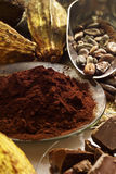 Cocoa powder in bowl, cocoa beans and pieces of chocolate Royalty Free Stock Photo