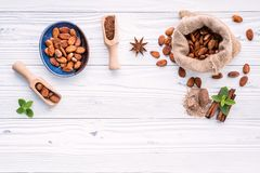 Cocoa powder and cacao beans on wooden background royalty free stock photo