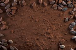 Cocoa Powder and Cocoa Beans Background Copy Space Stock Images