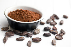 Cocoa powder and cocoa beans Stock Image