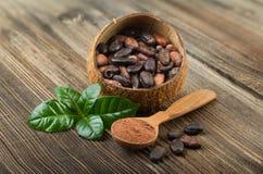 Cocoa powder and cocoa beans Stock Photos
