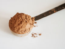Cocoa powder isolated on white background Royalty Free Stock Photo