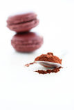 Cocoa powder and macaroons Stock Photos