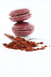 Cocoa powder and macaroons Stock Photo