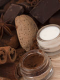 Cocoa powder and milk Royalty Free Stock Photography