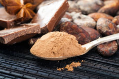Cocoa powder in spoon Royalty Free Stock Image
