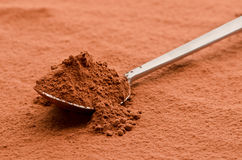 Cocoa powder on a spoon Stock Photography