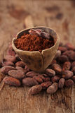 Cocoa powder in spoon on roasted cocoa chocolate beans back Royalty Free Stock Images