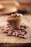 Cocoa powder in spoon on roasted cocoa chocolate beans back Stock Image