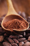Cocoa powder in spoon  on roasted cocoa chocolate beans backgrou Royalty Free Stock Photography