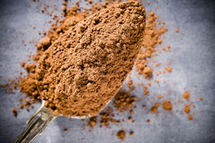 Cocoa powder. Stock Photography