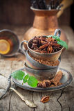 Cocoa powder, star anise, cinnamon sticks, mint royalty free stock photos