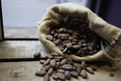 Cocoa sac over the wood Royalty Free Stock Photo
