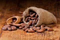Cocoa_scoop_bag Stock Images