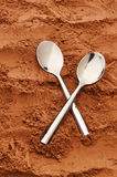 Cocoa spoons Stock Images