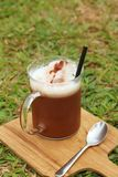 Cocoa with a teaspoon on a background of green grass. Stock Photo