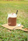 Cocoa with a teaspoon on a background of green grass. Stock Images