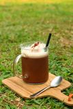 Cocoa with a teaspoon on a background of green grass. Royalty Free Stock Image