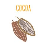 Cocoa. Vector EPS 10 hand drawn illustration Royalty Free Stock Photos