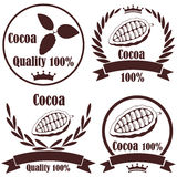 Cocoa Royalty Free Stock Photo