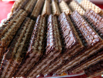 Cocoa wafers Stock Image