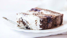 Cocoa and Whipped Cream Cake Stock Image