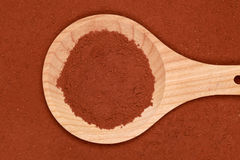 Cocoa on a wooden spoon Stock Photography