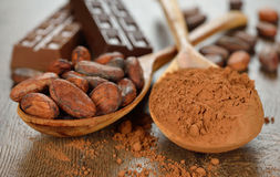 Cocoa in a wooden spoon Royalty Free Stock Image